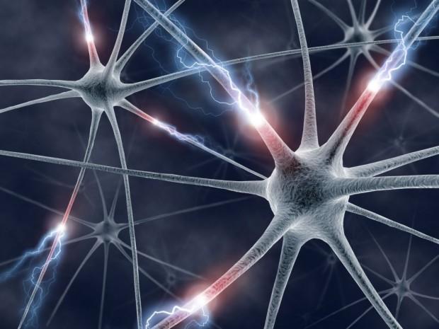 neurologie-groot-1024x768